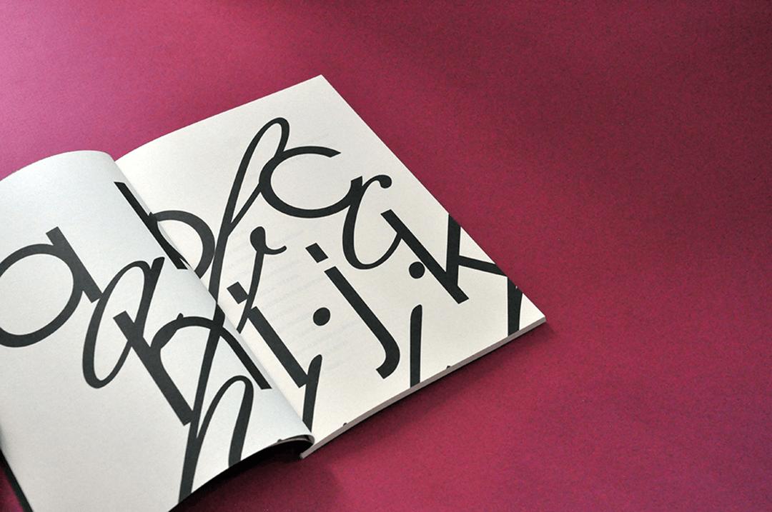 sara-duarte-professar-livro-3